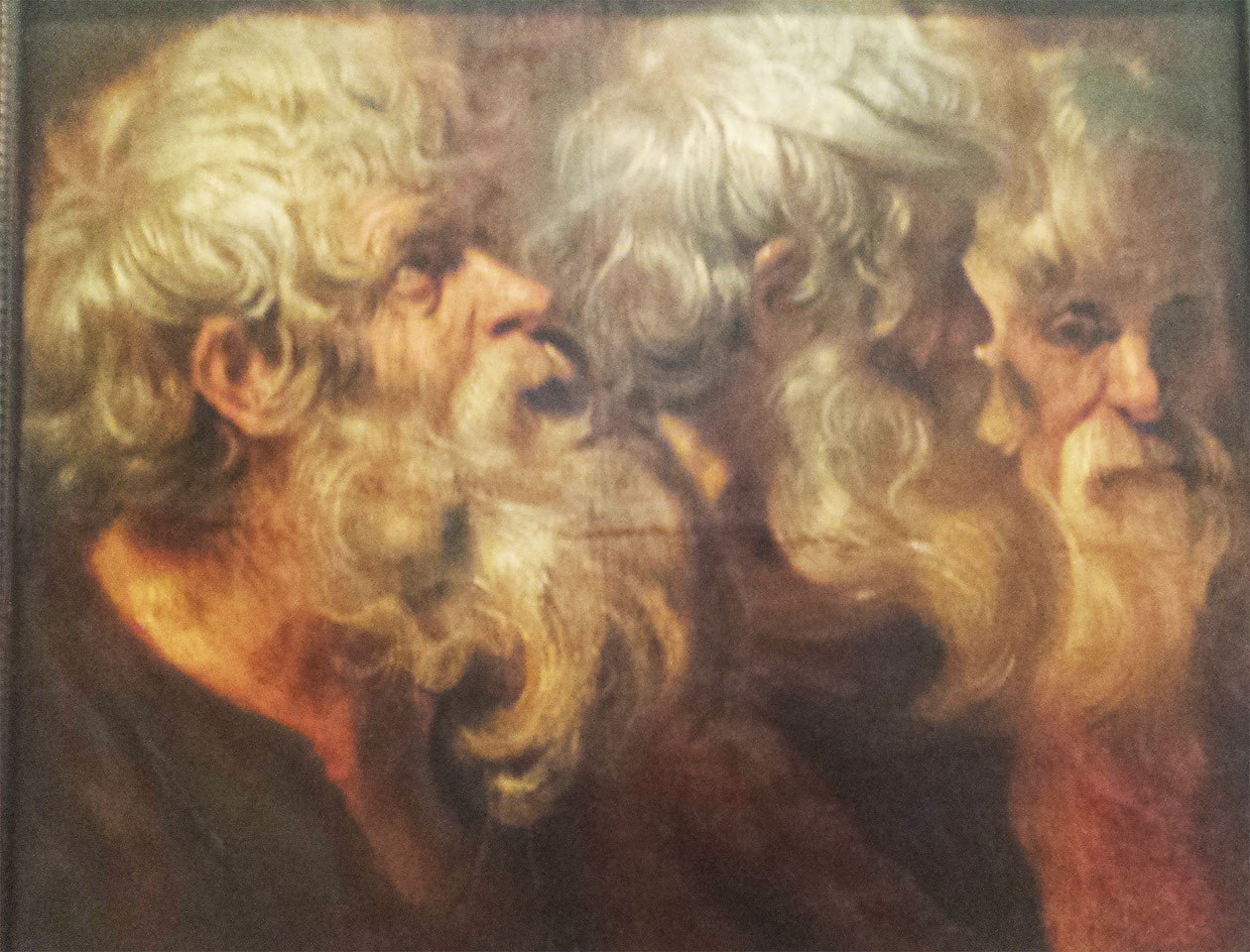 Jordaens :  study of 3 old men faces (Libourne Fine arts museum)