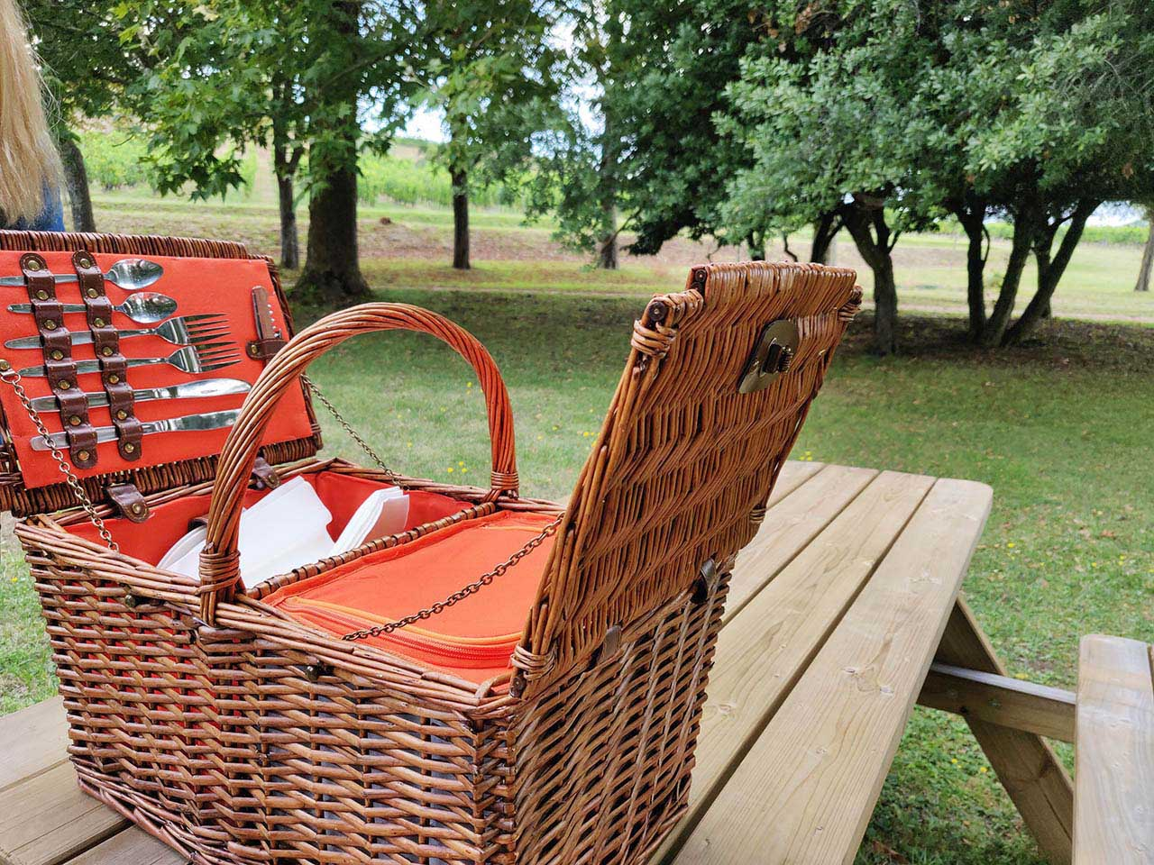 Family-friendly-Bordeaux-wine-tours-pic-nic-winery-vines