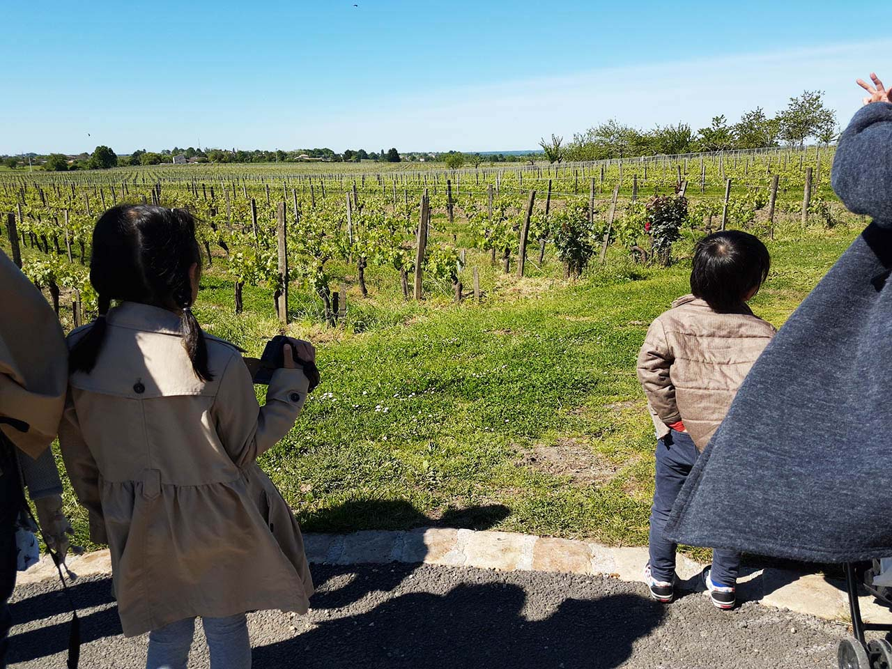 Family-friendly-Bordeaux-wine-tours