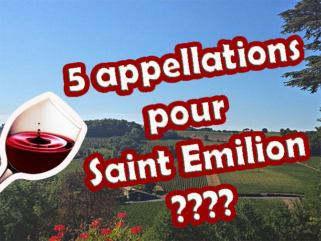 5 wine labels for Saint Emilion? Would you like to understand better?