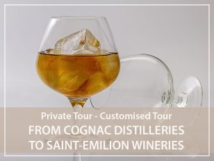 Private Tour : from Cognac distilleries to Saint Emilion wineries