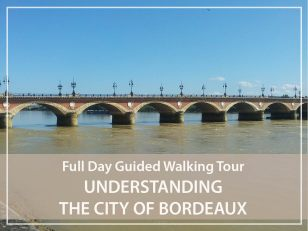 Full day guided walking tour of Bordeaux