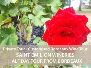 Private half-day Tour : Saint-Emilion village and wineries from Bordeaux